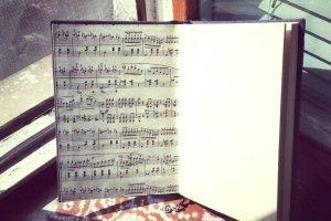 Музыкант - Описание