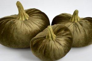 Набор декоративных тыковок (оливковый) - ІНШІ РОБОТИ