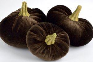 Робота Набор декоративных тыковок (шоколад)