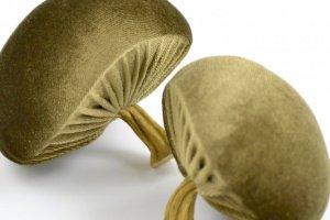 Грибочек декоративный (оливковый) - ІНШІ РОБОТИ