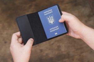Обложка на паспорт Arizona - ІНШІ РОБОТИ
