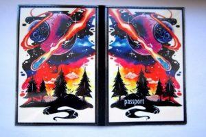 Кожаная  обложка на паспорт  Яркие краски  - Описание