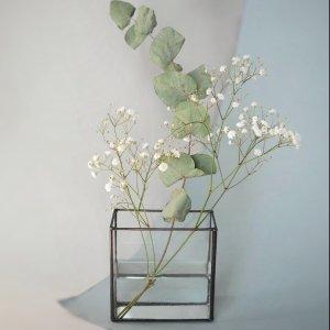 Флорариум/Ваза