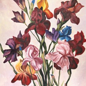 Робота Разноцветые ирисы