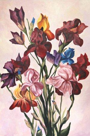 Разноцветые ирисы